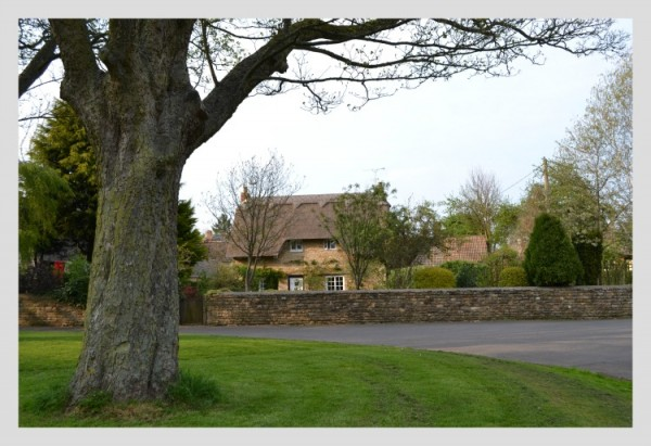 An Exton Thatched Cottage