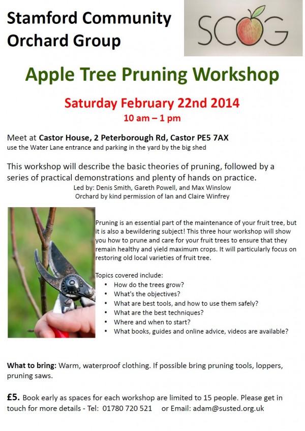 Apple Tree Pruning Workshop 22feb14