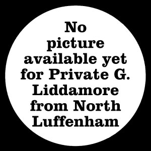 3088 Private George Liddamore